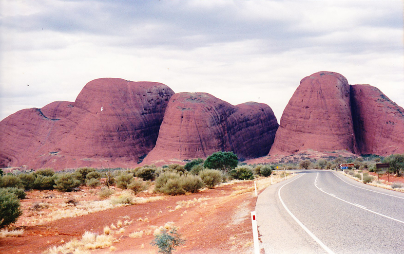 Road to the Olgas